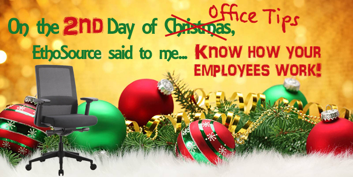 2nd Day of Christmas