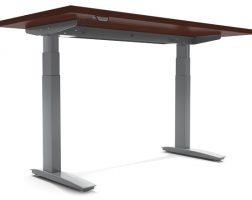 ESI Premium Electric Table