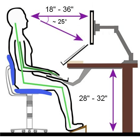 """The monitor should be located directly in front of the user (i.e. inline) when typing with the top of viewing surface of the monitor at or below eye level. The monitor should be located at least 18"""" and no more than 36"""" from the eyes; if uncertain, place it a distance equal to the size of the monitor (i.e. if a 24"""" wide monitor is being used, it should be located at least 24"""" from the eyes of the user when normally seated)."""